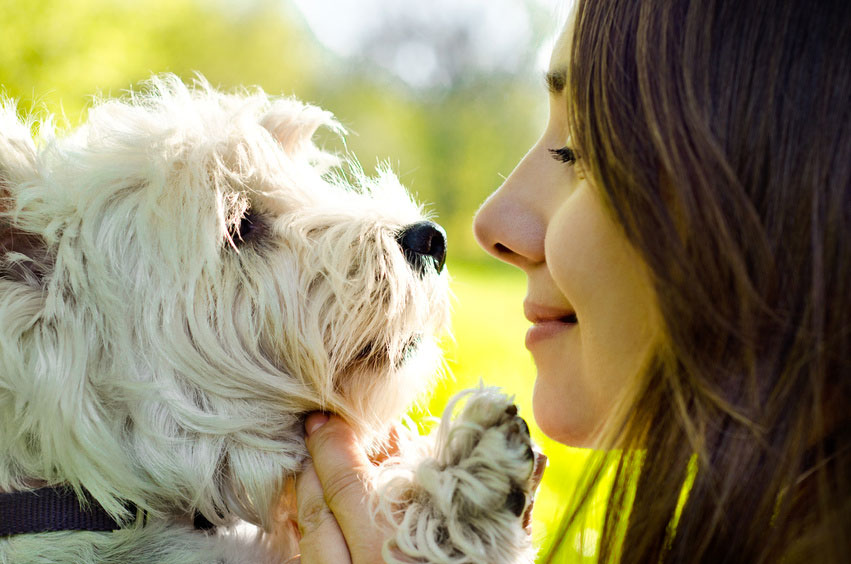 Hundeerziehung Frau und Hund