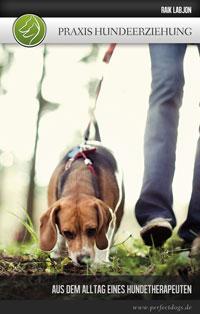Praxis Hundeerziehung - Aus dem Alltag eines Hundetherapeuten