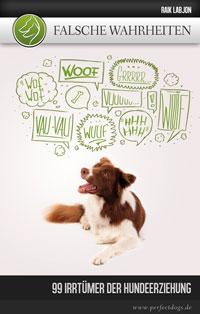 Falsche Wahrheiten - 99 Irrtümer der Hundeerziehung